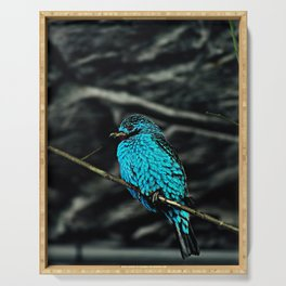Blue Bird in the tree Serving Tray