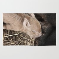 piglet Area & Throw Rugs featuring Piglet by Rachel's Pet Portraits