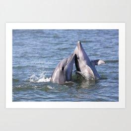Playful Dolphins Art Print