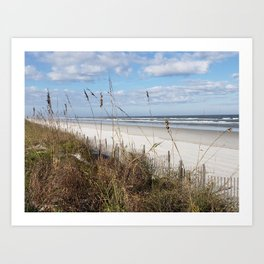 Screen of Sea Oats Art Print