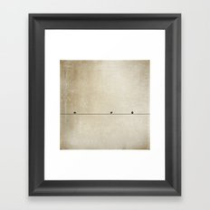 Songbird Trio Framed Art Print