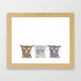 Triple Kitties Framed Art Print
