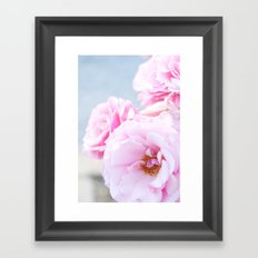 Blushing Roses Framed Art Print