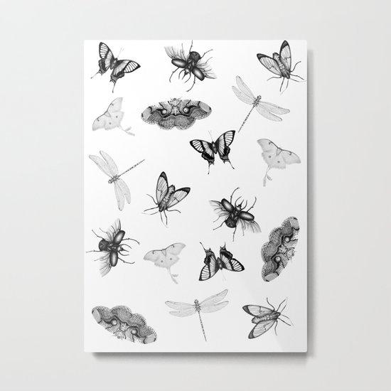 Entomologist Dreams Metal Print