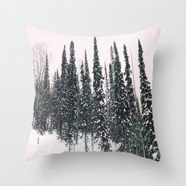 Winter day 11 Throw Pillow