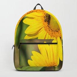 Field of Sunflower-5 Backpack