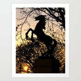 sunrise at Amelia Park Art Print