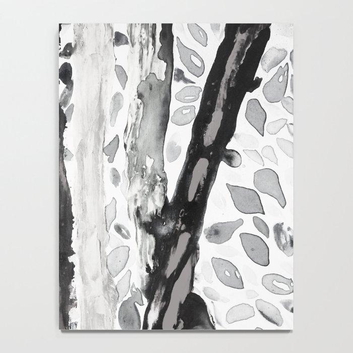 Rainbow Eucalyptus Graffiti artist tree from shedding bark South Pacific Black and White Night Notebook