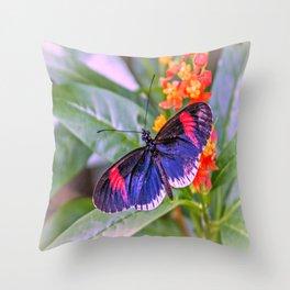 Red Postman Butterfly Throw Pillow