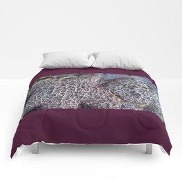 Starfish Stubble Comforters