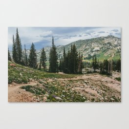 Wasatch Mountains, Utah Canvas Print