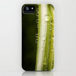 Garden Raindrops iPhone Case