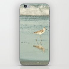 Exit Stage Right -- Willet Foraging Shallow Surf at the Beach iPhone & iPod Skin