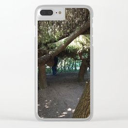 Inside tree cave at Kubota Garden Clear iPhone Case