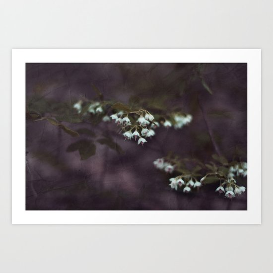 Nature's Beauty Art Print