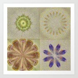 Jean'S Consonance Flowers  ID:16165-071253-84670 Art Print