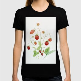 Wild Strawberries T-shirt