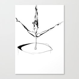 Splits Canvas Print