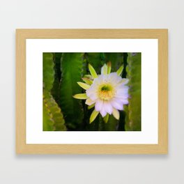 Shy Beauty Framed Art Print