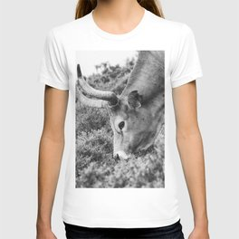 Portrait of a beautiful female cow T-shirt