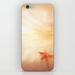 Delightful Sunset iPhone Skin