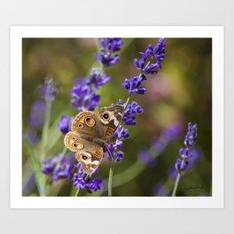 Lavender Landing Art Print