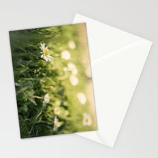 flower Margarita Stationery Cards