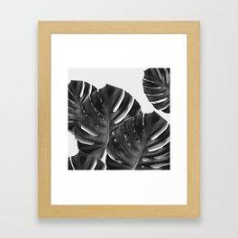 Monstera_Le_2 Framed Art Print