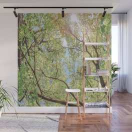 Canopy of trees with sun beaming through in vivid green and blue Wall Mural