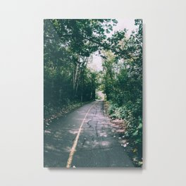 River Valley Path Metal Print