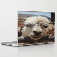 lama Laptop & iPad Skins featuring Lama  by Ricarda Balistreri