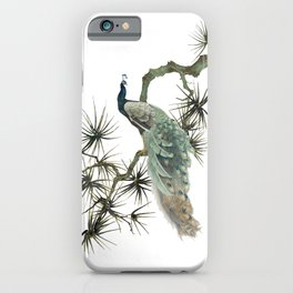 Turquoise Peacock iPhone Case