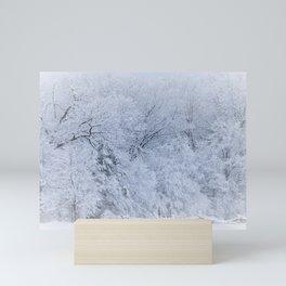 First Snow Fall Fresh Snow on Trees Nature Photography ~ Winter Hush Mini Art Print