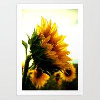 sunflower Art Prints featuring Sunflower by 2sweet4words Designs