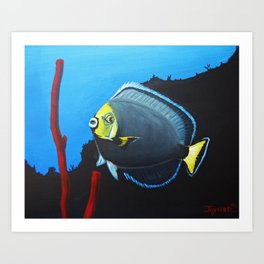 wondering Fish  Art Print