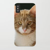 charlie iPhone & iPod Cases featuring Charlie by B Hoagland