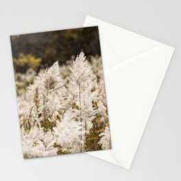 Phragmite in Freehold Stationery Cards