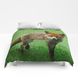 Wild Red Fox Comforters