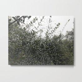 The spider series Metal Print