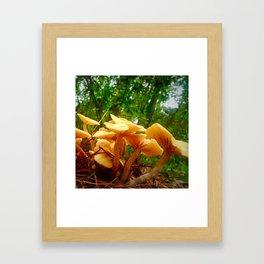 Shroom Season Framed Art Print