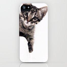 Janine, a beautiful cat iPhone Case
