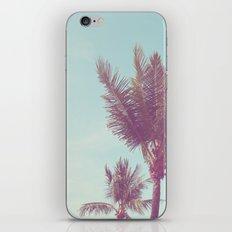Paradise Palm iPhone & iPod Skin