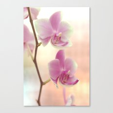 Orchid Ⅰ Canvas Print