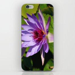 Pond Beauty iPhone Skin