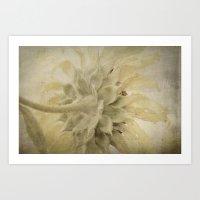 Texture Sunflower Art Print