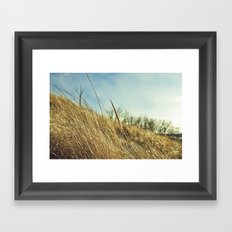 Low POV 2 Framed Art Print