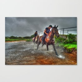 Water Horses  Canvas Print