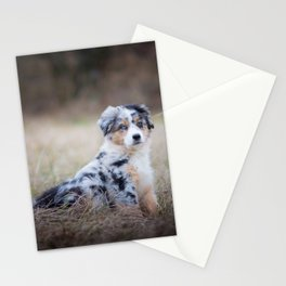 Serious dog in the field Stationery Cards