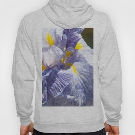 The love of the Iris by Teresa Thompson Hoody