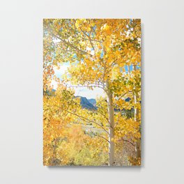 Fall in Frisco Metal Print